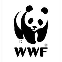 WWF International Net Worth