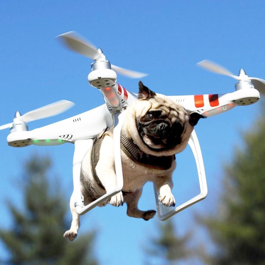 Утро картинки, смешные картинки вертолет