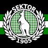 Sektor 1905