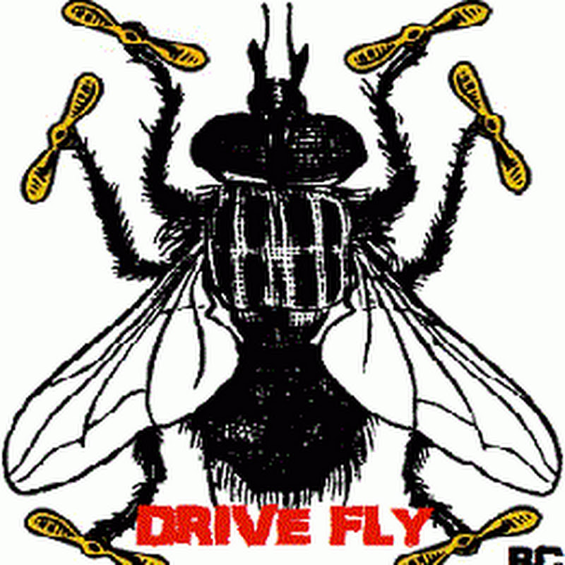 DriveFlyRc