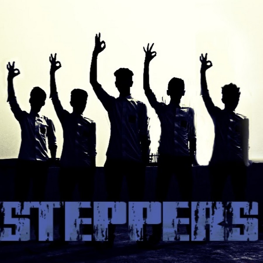 STEPPERS VR1