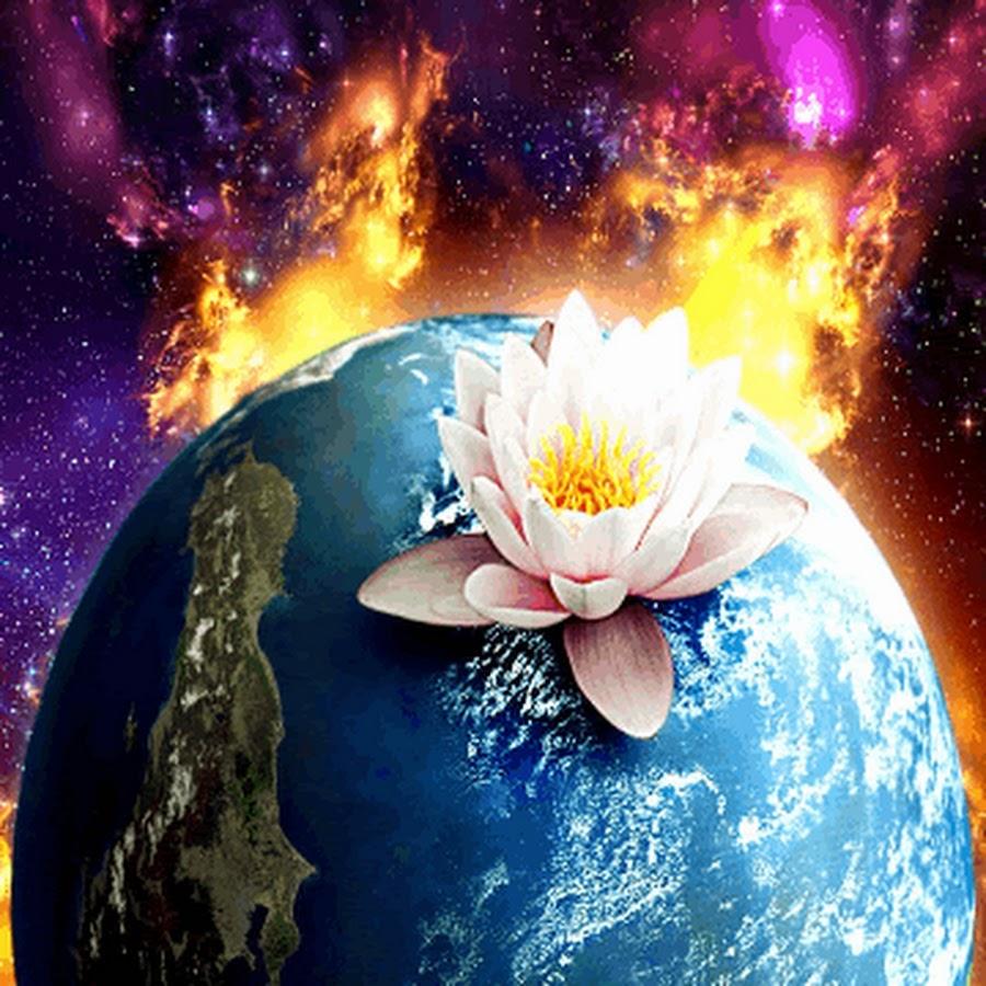 обычное открытки двигающиеся цветы выбирая комнатные растения