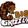 Big Grizzly Online Solutions