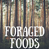 Foraged Foods