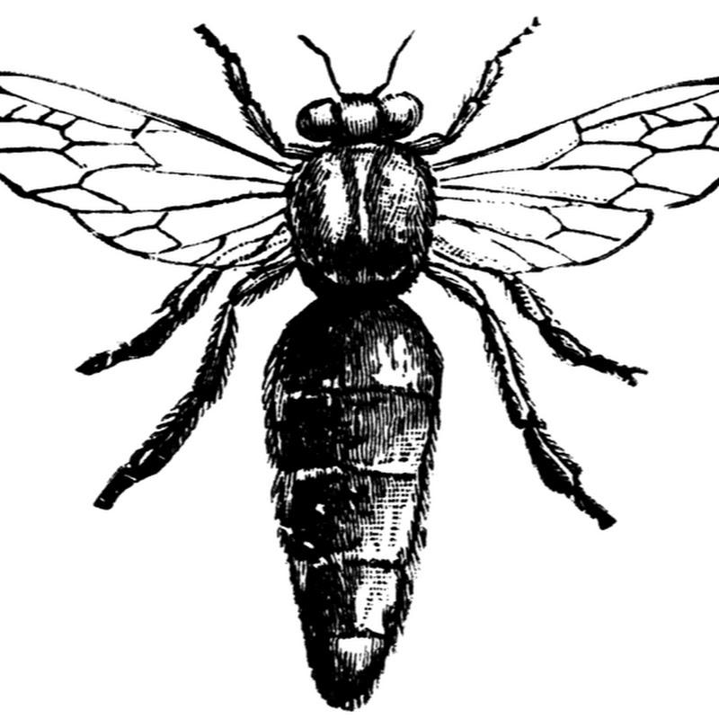 Honey Love (honeyloveorg)
