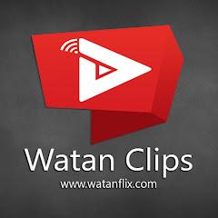 Watan Clips Net Worth