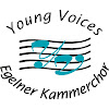 youngvoicesde