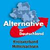 AfD Mittelsachsen
