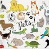 Animals & Pets