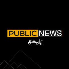Public News Net Worth
