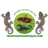 Trang trại dế Thanh Xuân VTV2 phát sóng Channel Videos