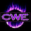 CWE_247