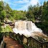 Blackwater Falls & Canaan Valley