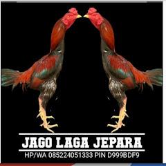 JAGO LAGA JEPARA-3
