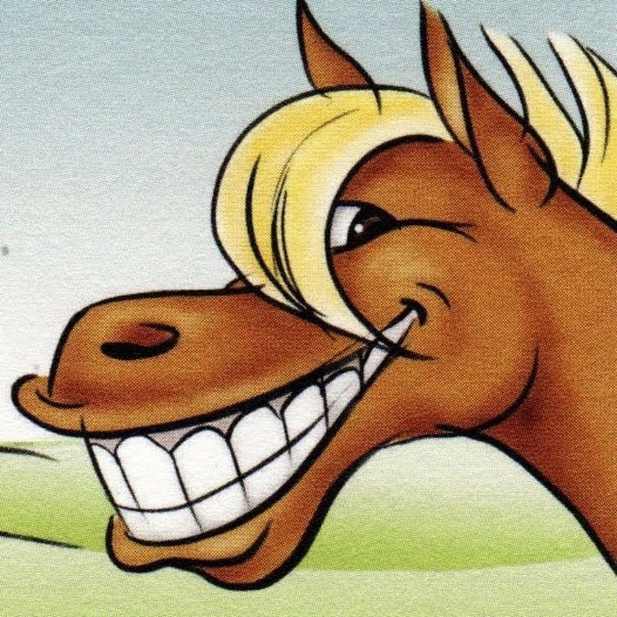 Картинки лошади смешные прикольные мультяшные