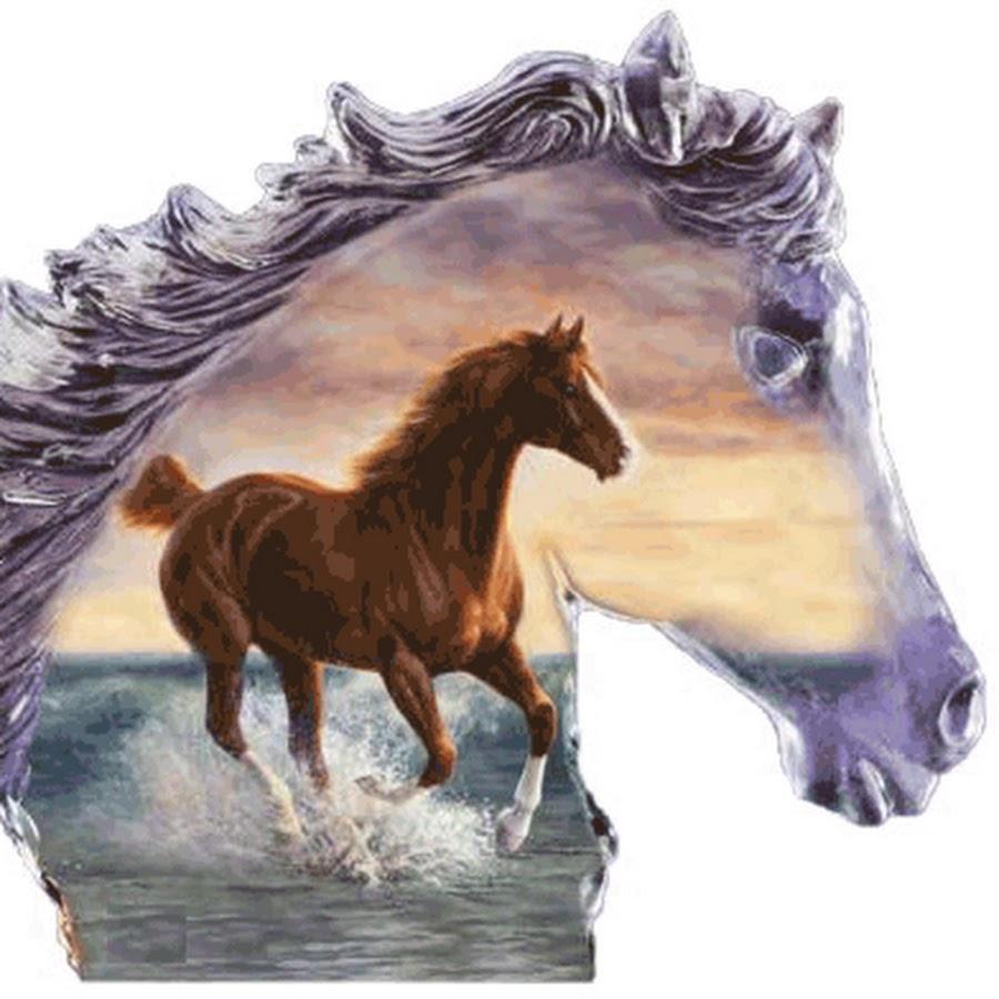 Открытку, картинки на телефон лошади анимация