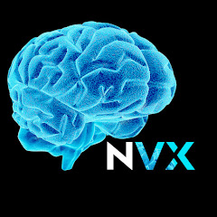 NeuroVox