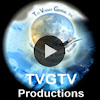 TriVisionGlobal