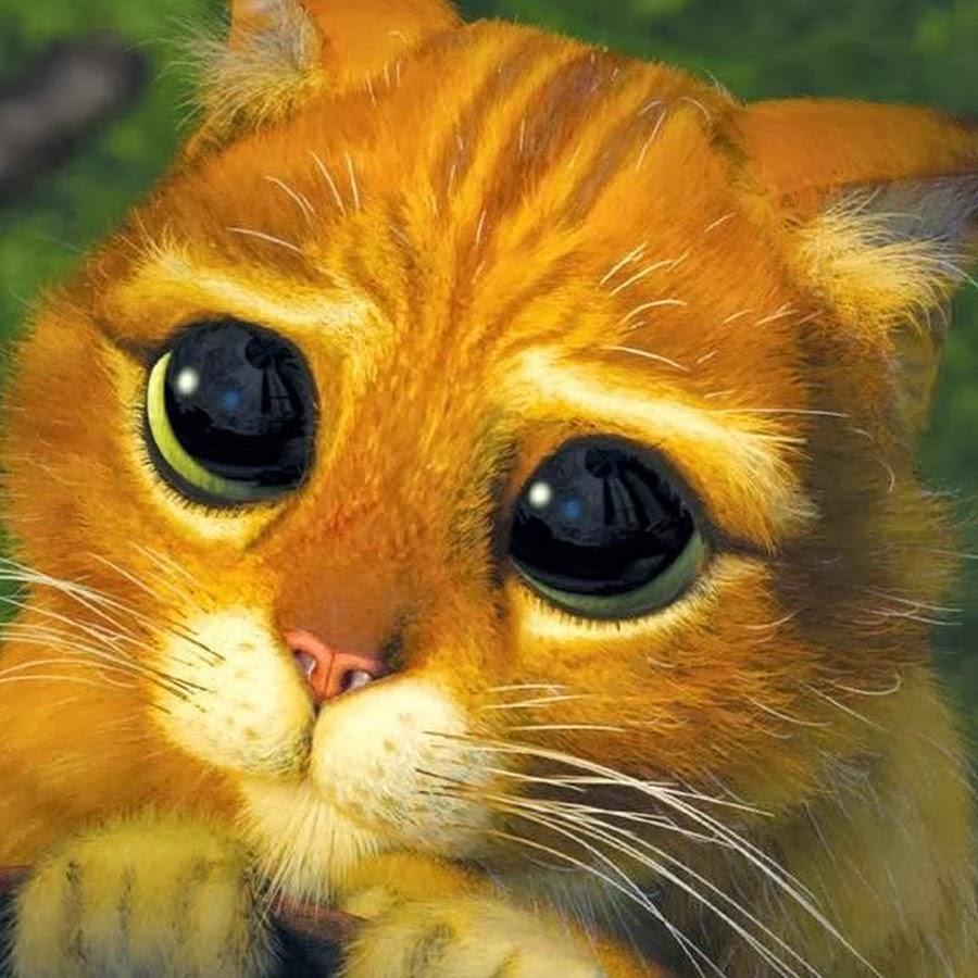 Кот из шрека картинка прикольная, открытка