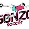Gonzo Soccer