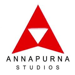 Annapurna Studios Net Worth