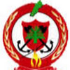 LebaneseGeneralDirectorate CivilDefense