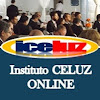 Iceluz online