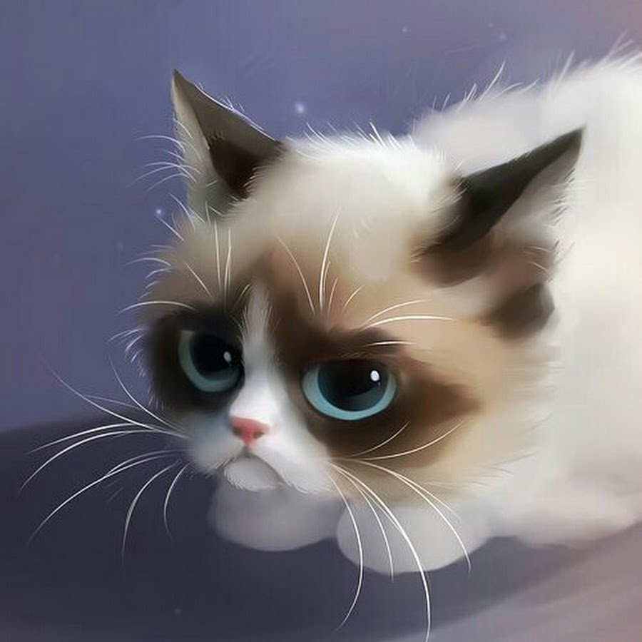 Открытки для, картинки милые коты арты