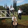 Orquestra Orpheus - Músicos para Casamento RP