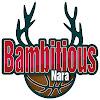 bambitiousnara