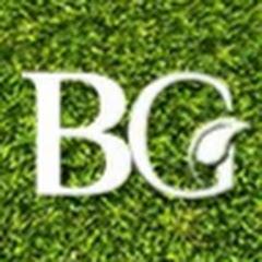 BANI Grass