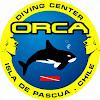 Seem Orca