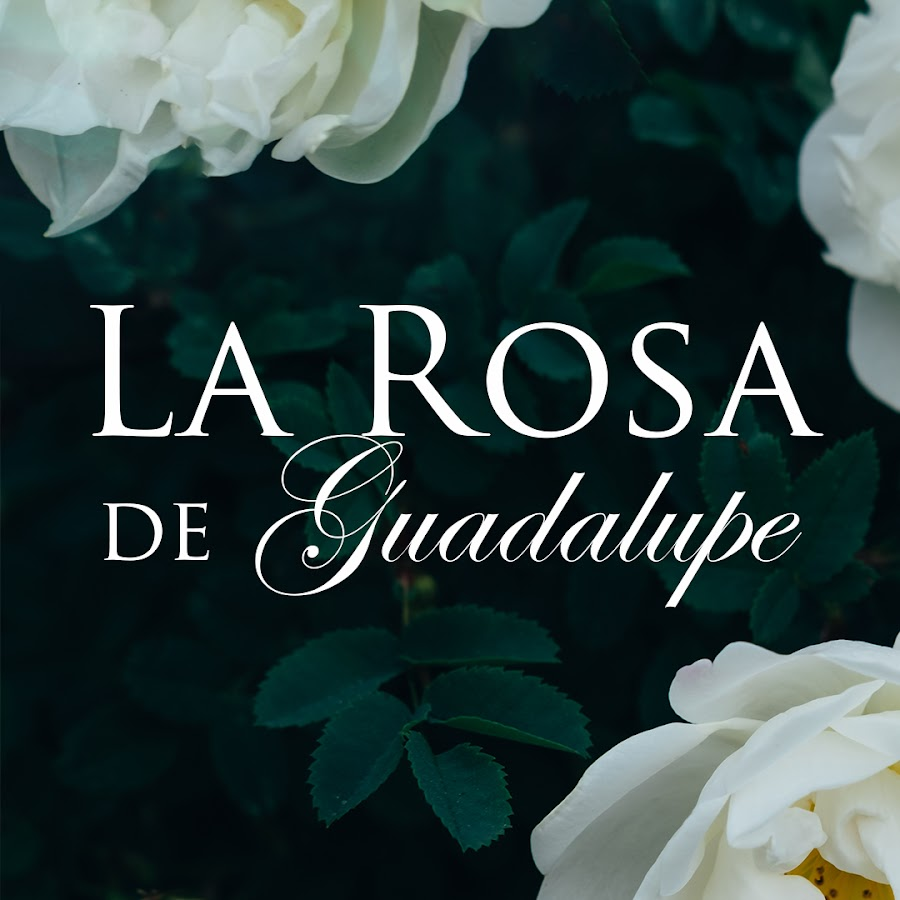 La Rosa De Guadalupe Youtube