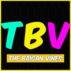 The Baigan Vines Official Net Worth