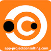 APP Consultoría - Project Management Consulting