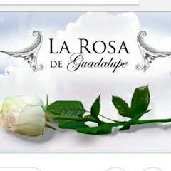 Cuanto Gana La Rosa Hd