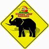 FunnyDay Safari