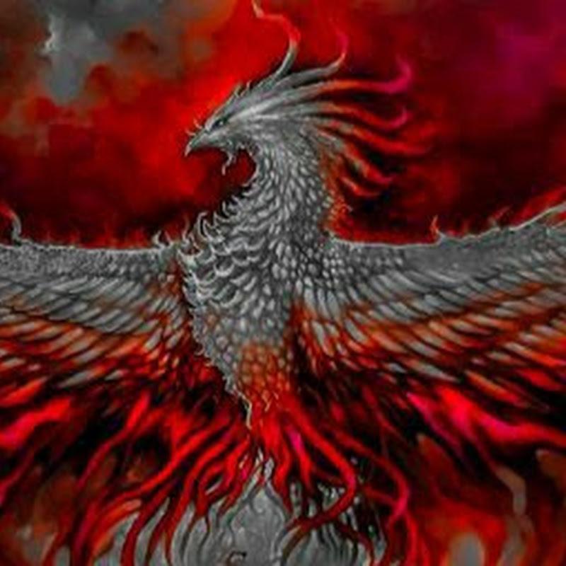 Phoenyx Gaming (phoenyx-gaming)