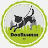 DogRunnin Exercise For Urban Dogs