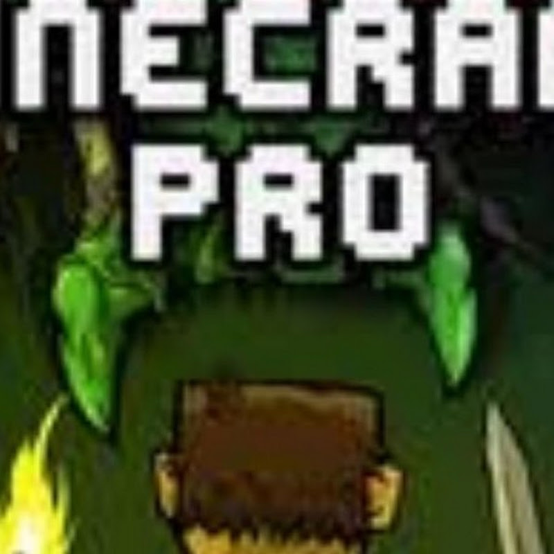 Xiom Plays (minecraft-pro)