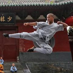 Shaolin kung fu Net Worth