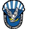 Parachute Team Wings of Blue