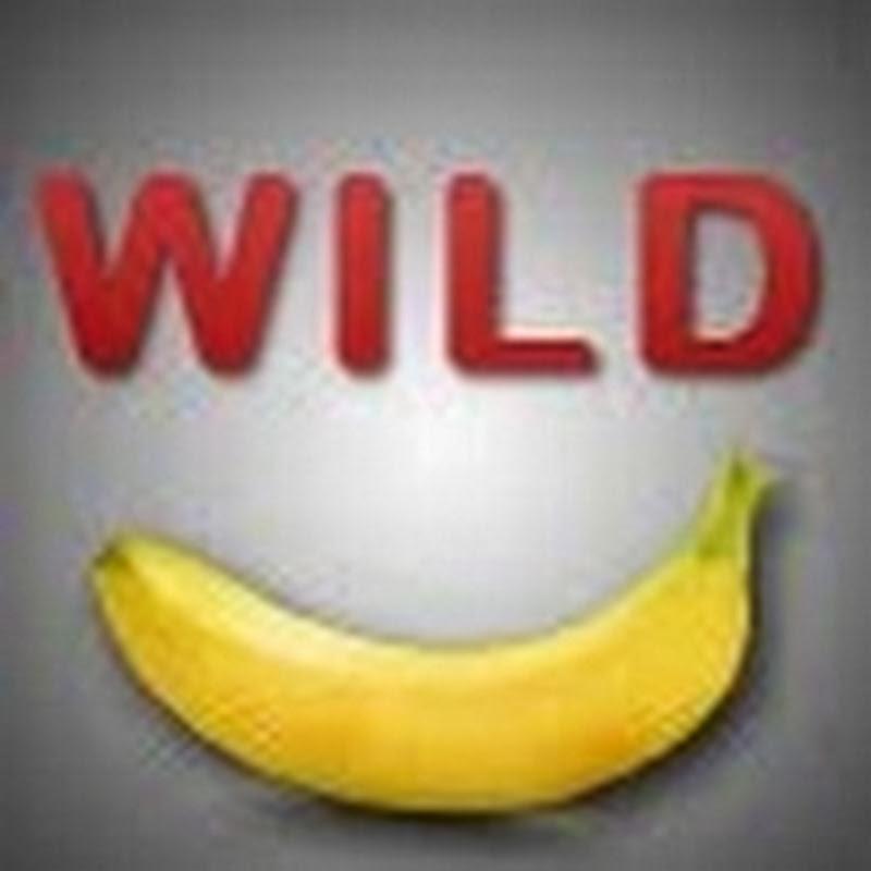 WildBananasTV
