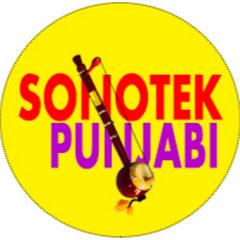 Sonotek Punjabi Net Worth
