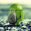 Android Pro