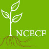 NC Early Childhood Foundation