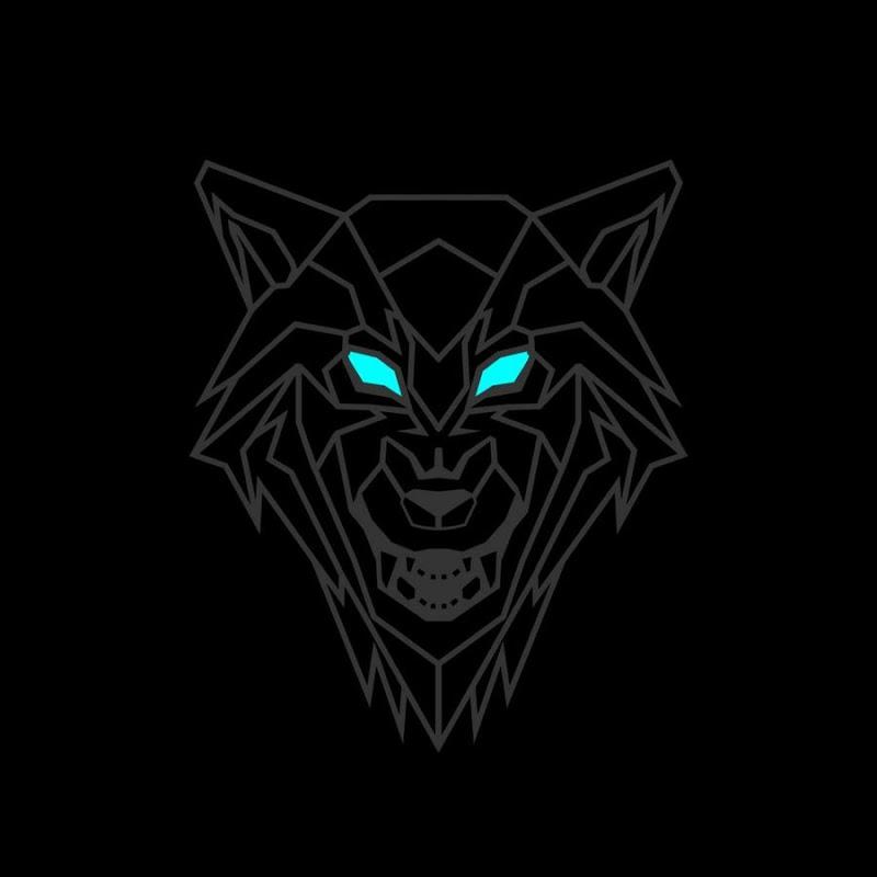 Wolf K2