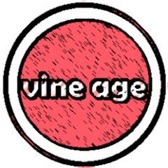 Vine Age Net Worth