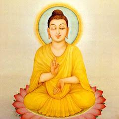 Thư viện Phật học Net Worth