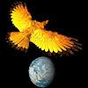 PhoenixRecording